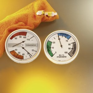 Thermometer & Hygrometer